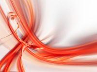 Het Bloedgroepdieet bloedgroepen en hun belangrijkste eigenschappen