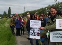 monsanto demonstratie