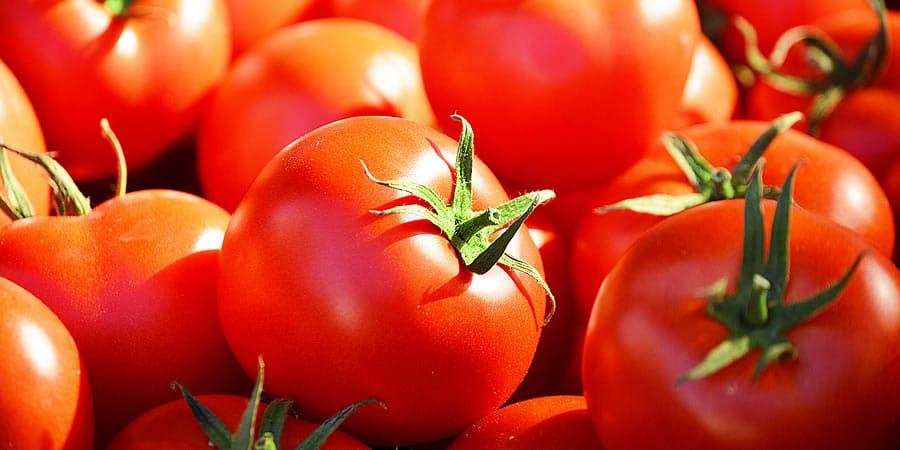 EU einde octrooien groenten fruit