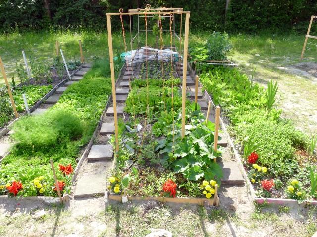 eetbare tuin en permacultuur